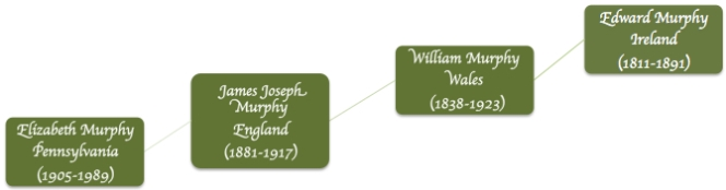 Murphy Lineage